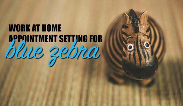 Work at Home For Blue Zebra Appointment Setting