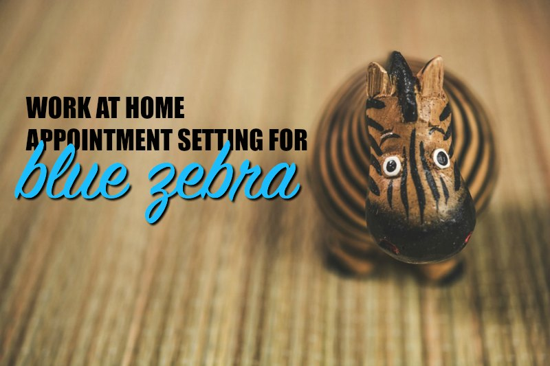 appointment setting jobs work from home work at home for blue zebra appointment setting 2797