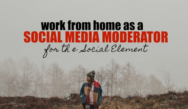 Work at Home Social Media Moderation at The Social Element