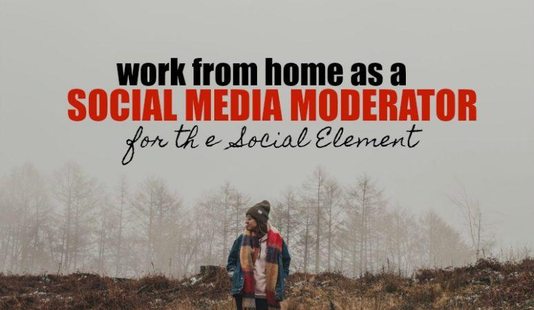 Work at Home Social Media Moderation at The Social Element