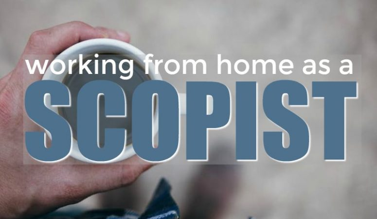 All About Working From Home As a Scopist