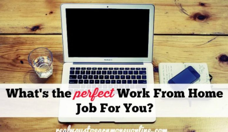 What Is The Perfect Work From Home Job For You?